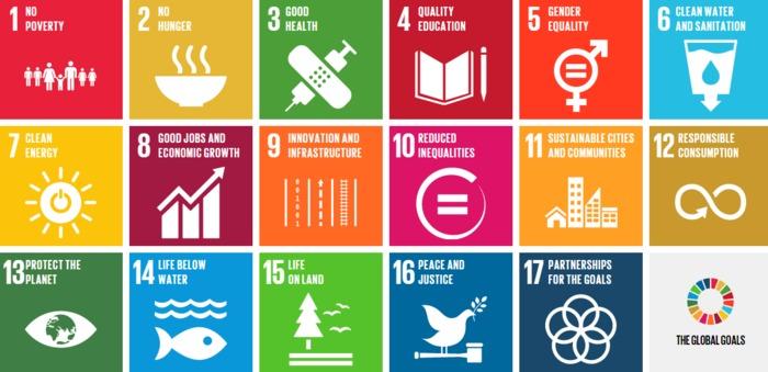 SDGsreal