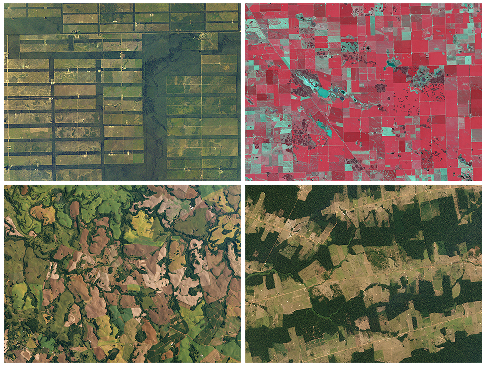 South american crops