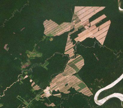 rapid deforestation in Bolivia