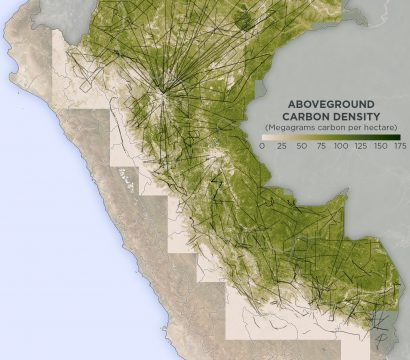 Map of above ground forest carbon in the Peruvian Amazon