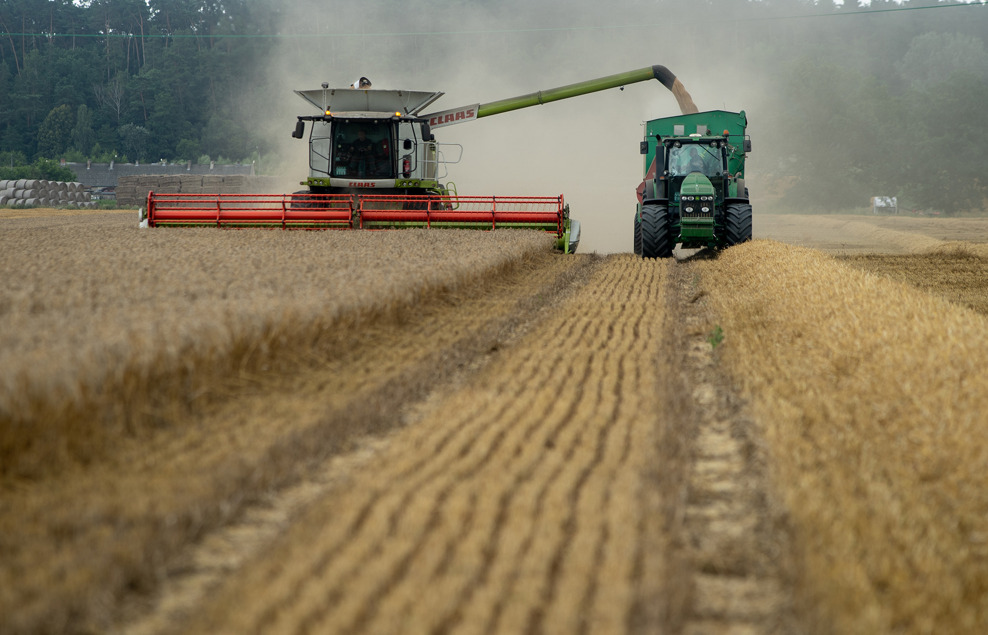 Winter wheat harvest in Pomorskie Voivodship, Poland // Credit: David Kaszlikowski and SatAgro