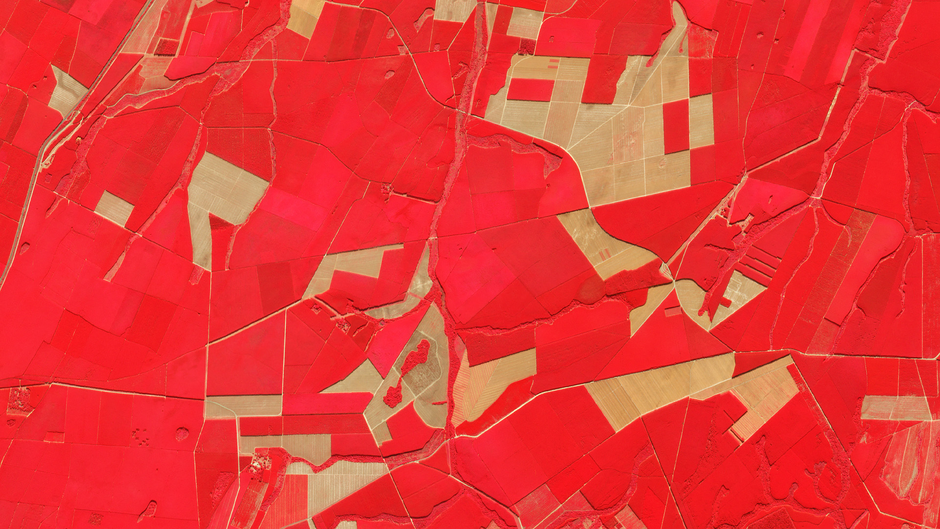 Near-infrared, red, green false-color composite of timber stands near Mtubatuba, South Africa. June 4, 2019. © 2019, Planet Labs Inc. All Rights Reserved.