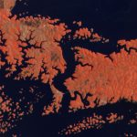Bayano Lake, Panamá Province, Panama. © 2020, Planet Labs Inc. All Rights Reserved.